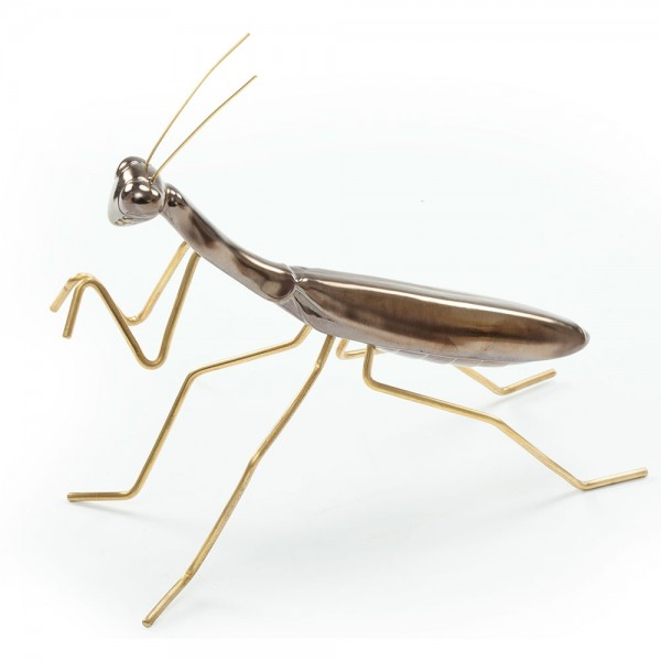 Praying Mantis Gold. Mambo
