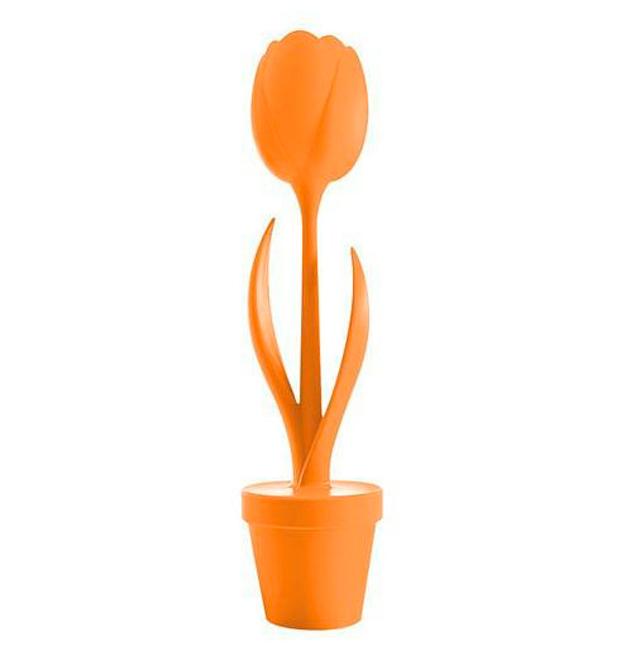 Tulip XL Myyour online