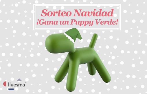 Sorteo Navidad de Lluesma - Puppy Verde de Magis