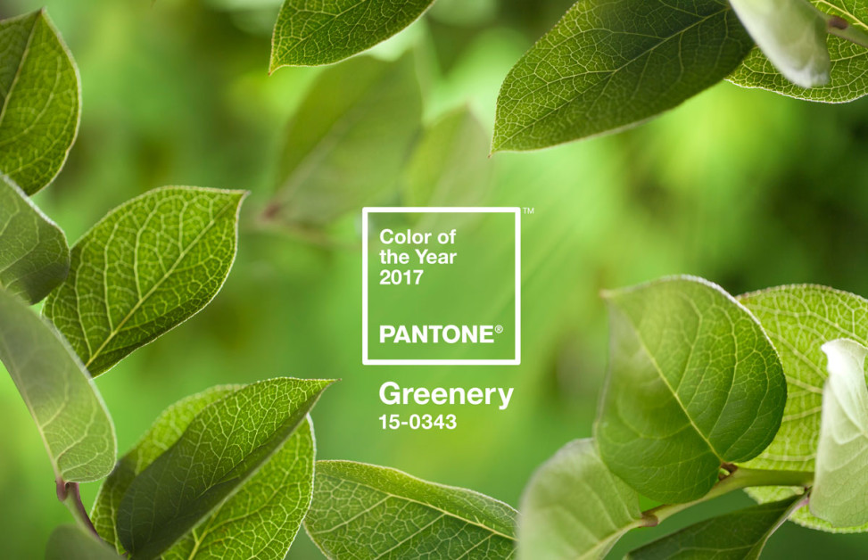 Pantone Color del 2017 Greenery - Lluesma