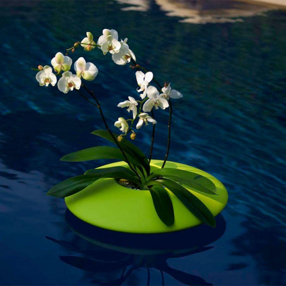 macetero flotante para piscina